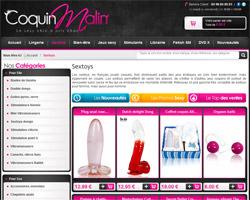 Page d'accueil de Coquin Malin