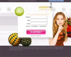 Page d'accueil de Enchere VIP