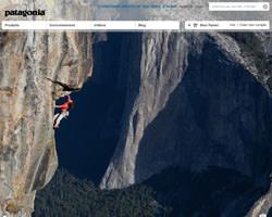 Page d'accueil de Patagonia
